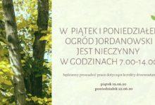 Photo of Zamknięcie Ogrodu Jordanowskiego – korekta drzewostanu